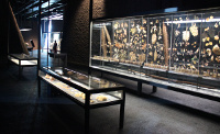 Showcases of the vegetable kingdom in the Natural Sciences Museum of Barcelona